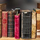 1st Bookshelf Account