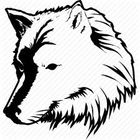 Aliha Store Pinterest Account