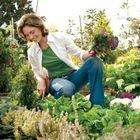 Container Garden Planters Blog instagram Account
