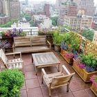 Rooftop Gardening Pinterest Account