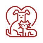 The New Pet Life's Pinterest Account Avatar