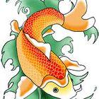 Koi Fish Gardens Account