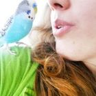 Ashley Lowery Pinterest Account