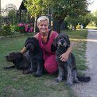 Zsuzsanna Farkas Pinterest Account