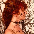 Vanessa Schultz Pinterest Account
