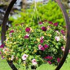 Garden Dekoration Ideas - DIY