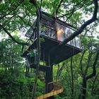 Treeful Treehouse EcoResort instagram Account