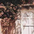 ✿ emerson oaklee ✿ Pinterest Account