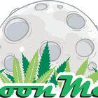 Moon Men Pinterest Account