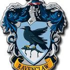 RavenClaw07 Pinterest Account
