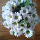 Fatma Dündar Ip Pinterest Account