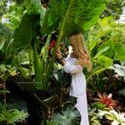 Tropical Cottage Magick Pinterest Account