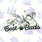 Best Buds Pinterest Account