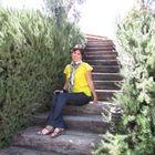 Alma Valdez Pinterest Account
