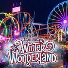 wonderland Pinterest Account