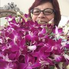 Winifred Gleason Pinterest Account