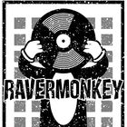 Ravermonkey Pinterest Account