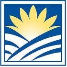 Sun Valley Floral Farms Pinterest Account