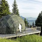 Geodesic  Dome Tent  Pinterest Account