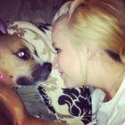 Lauren Fontenot Pinterest Account