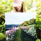 Kathryn Silvera Art Pinterest Account