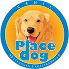 Canil Place Dog Pinterest Account