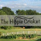 The Hippie Cricket Pinterest Account