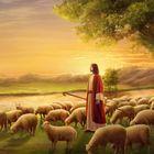 Igreja de Deus Todo-Poderoso –  O evangelho do reino do céus instagram Account