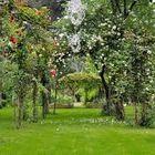 Garden instagram Account