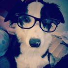 Carissa Miniard Pinterest Account