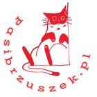 Pasibrzuszek.pl Pinterest Account