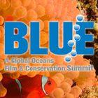 BLUE Ocean Film Festival Account