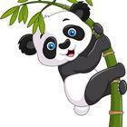 Cute's Pinterest Account Avatar