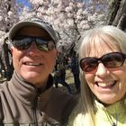 Lori Thomas Pinterest Account