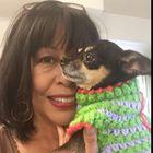 ChihuahuaChiChiCrochet Pinterest Account
