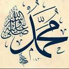 Amr Salah Pinterest Account