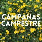 CampanasCampestre Pinterest Account
