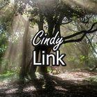 Cindy Pet Bay Pinterest Account