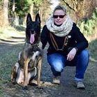 Silvia Gottwald Pinterest Account