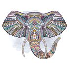 Elephant Lighting Store Pinterest Account