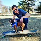 Pet Lover Guy Pinterest Account