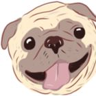Doglyf's Pinterest Account Avatar
