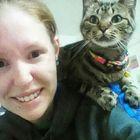 Chelsea Lindsay Pinterest Account