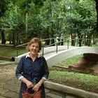 Eliana Andrade Pinterest Account
