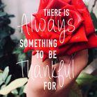 SONA ALI Pinterest Account