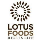 Lotus Foods Pinterest Account
