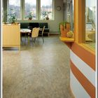 Linoleum Living Room marmoleum flooring Pinterest Account