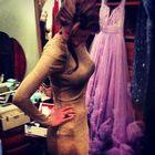Elisa Holly Burkhard Pinterest Account