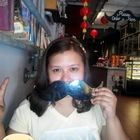 Anna leong Pinterest Account