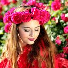 Maria Lemper Blog's Pinterest Account Avatar
